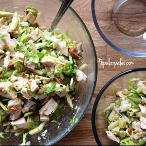 Chicken & Brussels Sprouts Salad | popularpaleo.com