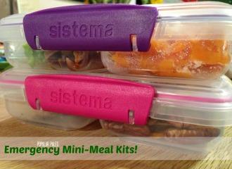 Emergency Mini-Meal Kits2   Popular Paleo