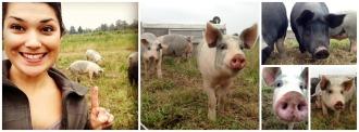 Filbert Acres Farm | Popular Paleo