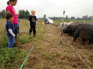 Kids meet the Filbert Acres pigs | Popular Paleo